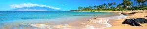 Maui Image2
